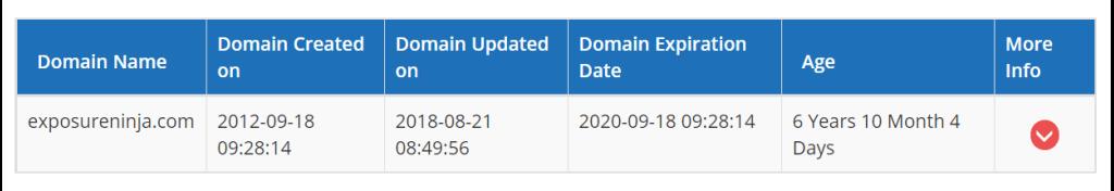 Screenshot of the domain age checker tool