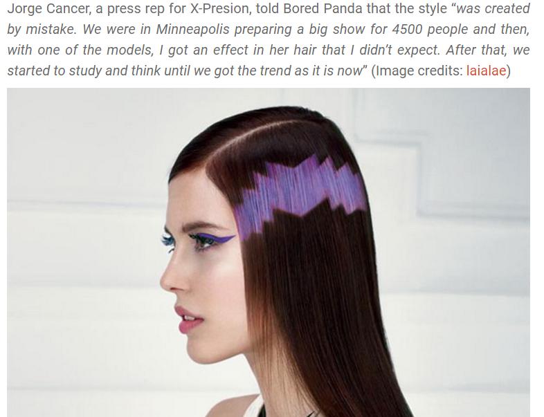 screenshot of hair design on a website