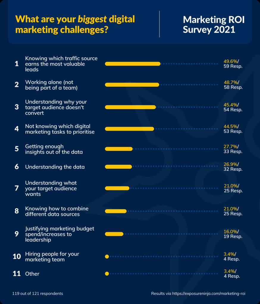 Marketing ROI Survey Graphic 03